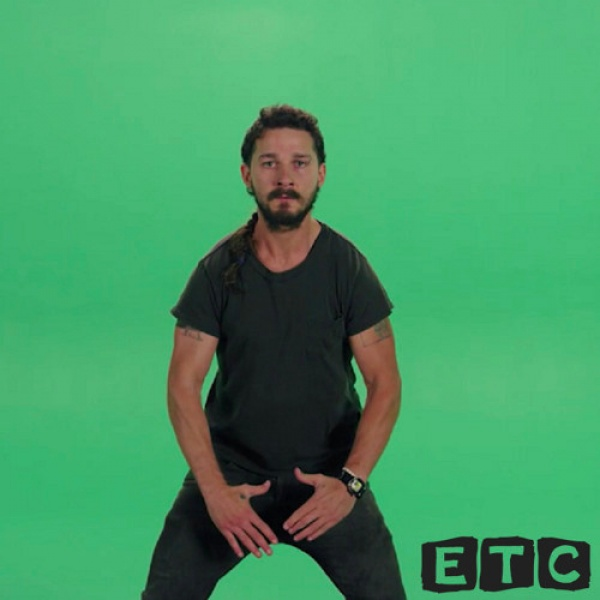 Case Arnold - Shia LaBeouf - Download and Stream | BaseShare